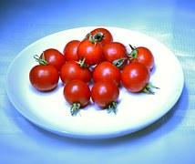 tomato-90858__180